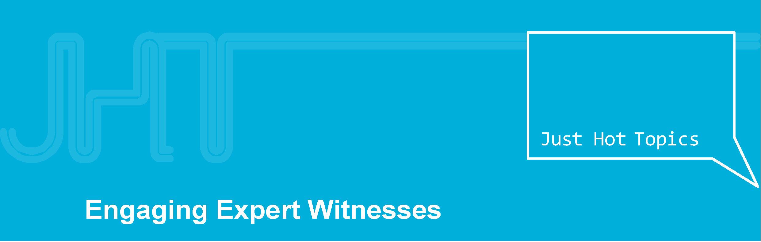 engaging expert witnessesrunner